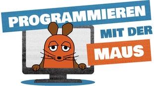 Die Maus guckt durch einen Computer.